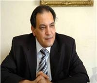 حافظ أبو سعدة يكشف تفاصيل زيارة وفد حقوقي وإعلامي أجنبي لـ «سجن المرج»