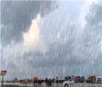 طقس غير مستقر| الأرصاد تحذر: أمطار غزيرة تمتد للقاهرة«فيديو»