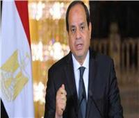 الرئيس السيسي يصدر قانون تنظيم هيئة المتحف القومي للحضارة المصرية