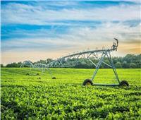 فيديو| الزراعة: رفع الحظر عن جميع الصادرات المصرية بالخارج