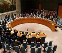 الخارجية الفلسطينية ترحب بقرار مجلس الأمن حول مقترح بلجيكي يدعم حل الدولتين