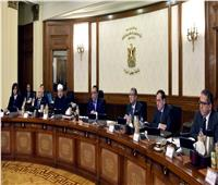 الحكومة توافق على تخصيص قطع أراضٍ بمحافظات «أسوان والفيوم والوادي الجديد»