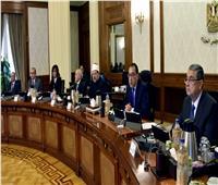 الحكومة: تنفيذ مشروع جديد لرفع كفاءة خط السكة الحديد «الفردان - بورسعيد – بئر العبد»