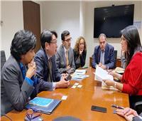 المشاط و«ميجا» يبحثان توسيع تقديمها ضمانات ضد المخاطر للمستثمرين