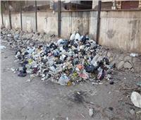 جريمة بسبب «القمامة».. محاولة «الصلح القاتلة» تنهي حياة شاب بالدقهلية