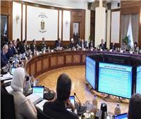 فيديو| مجلس الوزراء: مصر خالية من فيروس كورونا