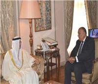 وزير الخارجية يبحث مع نظيره الإماراتي الأزمات الإقليمية الراهنة ومجالات التعاون الثنائي