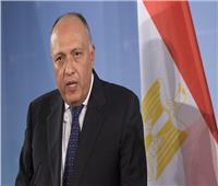 وزير الخارجية يسلم خادم الحرمين رسالة من الرئيس السيسي