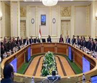 فيديو| الوزراء: إنجاز الحي الحكومي والمرافق بـ«العاصمة الإدارية» وصل لمراحل متقدمة