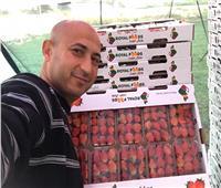 خبير زراعي يوضح أسباب انهيار أسعار محصول الفراولة