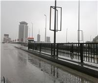 عاجل| الحكومة تعلن عدد وفيات موجة الطقس السيئ