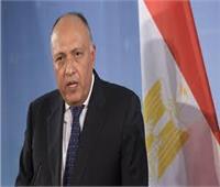 وزير الخارجية في جولة أفريقية حاملاً رسالة من رئيس الجمهورية