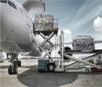 «الإياتا» يطالب باستبعاد الشحن الجوي من قيود السفر بسبب «كورونا»