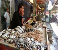 ننشر أسعار الأسماك في سوق العبور اليوم ١٧ مارس