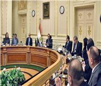 «الوزراء»: قراراتنا ضد «كورونا» استباقية.. وهدفنا تجاوز الفترة الحرجة