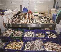 أسعار الأسماك في سوق العبور السبت 21 مارس