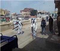 «البيطريين» ينضمون لجيش مصر الأبيض لمواجهة «كورونا» بالمحافظات