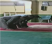 امسك مخالفة| مسجد في 6 أكتوبر لم يلتزم بقرار الأوقاف والأزهر