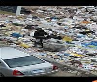 امسك مخالفة| أطفال يعبثون بالقمامة في الحي العاشر