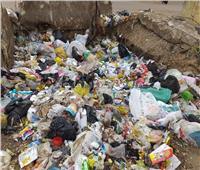 بالصور  طوخ تغرق في القمامة.. ومواطنة: «أنقذوا أولادنا»