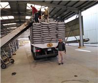 صور «الزراعة» تنتهي من إعداد تقاوي محصول القطن بأسعار مخفضة