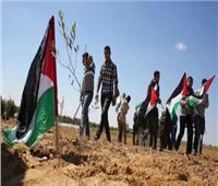 يوم الأرض.. 44 عامًا من نضال شعب فلسطين دون استكانة للاحتلال