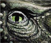 """العثور على """"الديناصور المحارب"""" في نيو مكسيكو"""