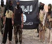 """العراق: مقتل 4 إرهابيين من """"داعش"""" بعملية أمنية جنوب ديالي"""