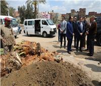 محافظ المنوفية يتفقد أعمال زراعة النخيل بمدينة شبين الكوم