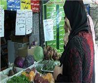 الزراعة: مبادرة «خير مزارعنا» تناسب الأسر المتوسطة