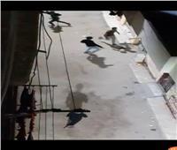 امسك مخالفة| شباب يخترقون حظر التجوال بلعب كرة القدم في الهانوفيل