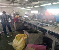 حملة تطهير وتعقيم لمصنع تدوير القمامة بالمحلة الكبرى