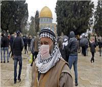 فلسطين: تسجيل 6 إصابات جديدة بفيروس كورونا بإجمالي 260 حالة