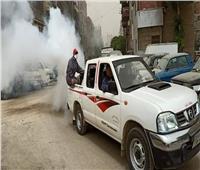 نائب محافظ القاهرة: رش أحياء المنطقة الشمالية لمواجهة الذباب