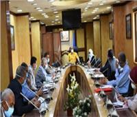 محافظ أسوان: إزالة العراقيل أمام المشروعات الاستثمارية المتعثرة