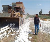 إزالة 9 حالات تعدي على الرقعة الزراعية بكفر الدوار