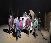 «شباب طوخ» بالقليوبية يتحدون لتنظيف وتطهير قريتهم لمواجهة فيروس كورونا