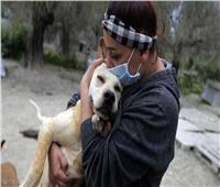 دراسة حديثة تكشف الحيوانات الأليفة التي قد تصاب بكورونا