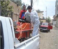 تطهير قرى مركز المحلة ورفع القمامة من جميع الشوارع