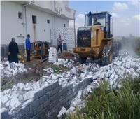 إزالة 20 حالة تعدي على أراضي زراعية وأملاك دولة بالبحيرة