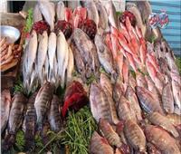 أسعار الأسماك في سوق العبور اليوم 10 أبريل