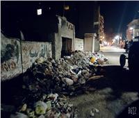 صور| شباب المحلة الكبرى يرفع أطنان قمامة من الشوارع