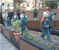 محافظ الدقهلية يشكر قائد الجيش الثاني الميداني لاستمرار المشاركة بالتطهير والتعقيم