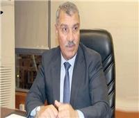 الرقابة على الصادرات: مواد البناء والكيماويات على رأس الصادرات المصرية