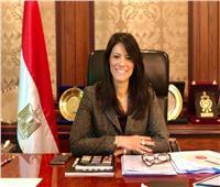 وزيرة التعاون الدولى تستعرض استراتيجية مصر لمواجهة انتشار فيروس كورونا