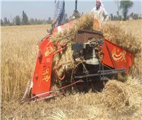 الزراعة: حصاد مايقرب من 14 ألف فدان قمح في 3 محافظات