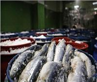 ضبط وإعدام 53 طن أغذية متنوعة وأسماك مملحة ومدخنة بمحافظات الجمهورية
