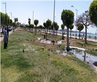 غمر الحدائق بمياه الري وغلق مداخل محافظة السويس
