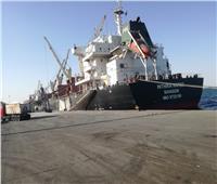 خلال الأسبوع الماضي..  31 سفينة إجمالي الحركة بموانئ الجنوبية بالهيئة الاقتصادية