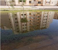 غلق الحدائق والمسطحات الخضراء وغمرها بالمياه بأسيوط